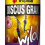 csm_Discus-Gran-Wild_320x500px_01_319fd27673